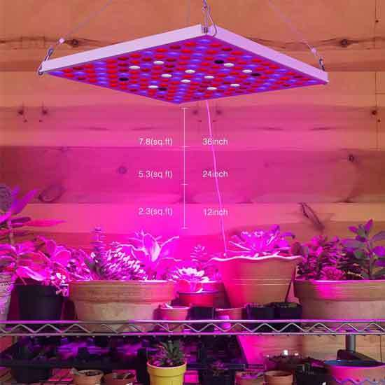 Roleadro LED Grow Light for Indoor Plants