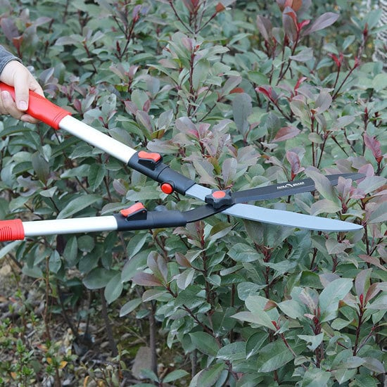 Best Hedge Shears For Your Garden FLORA GUARD 26 Inch Professional Extensible Hedge Shears 2