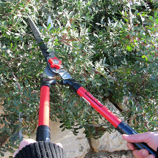 Best Hedge Shears For Your Garden Tabor Tools B620a Hedge Shears 2