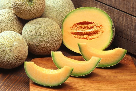 How To Grow Cantaloupe In Container Harvest Cantaloupe