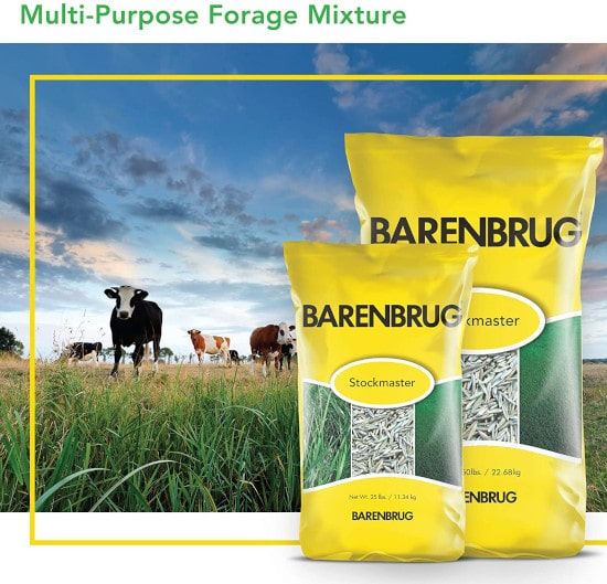 Barenbrug Stockmaster Grass Seed Premium Multi Purpose for Sandy Soil Best Grass Seed for Sandy Soil 2