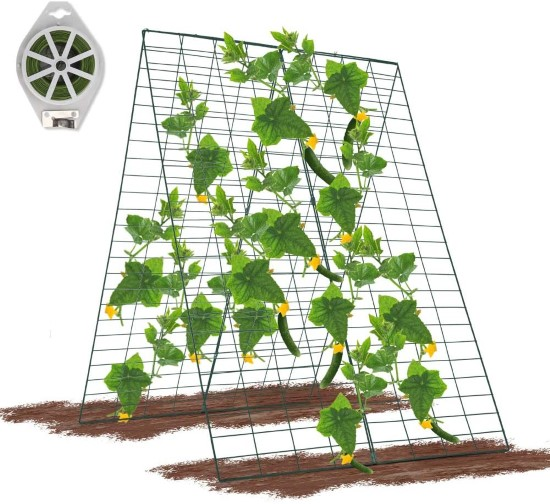 GROWNEER 34 x 48 Inches Foldable Cucumber Trellis How Much Sun Do Cucumbers Need To Get Best Harvest