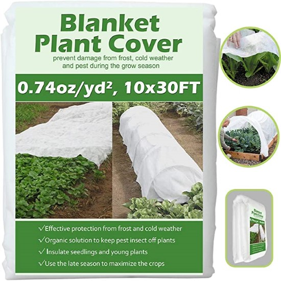 Valibe Plant Covers Freeze Protection How Much Sun Does Lettuce Need And How To Prevent Excess Sunlight