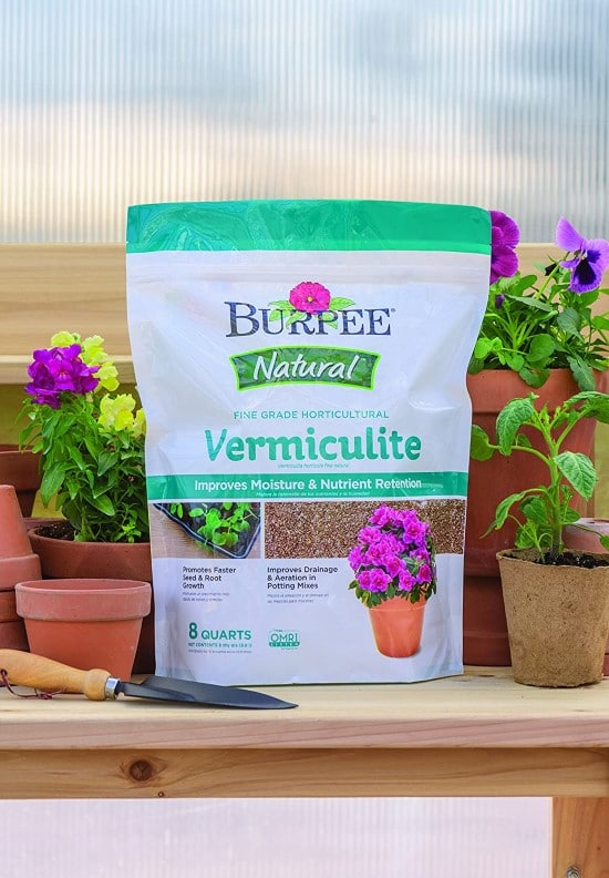 Vermiculite How Much Water Does Basil Need